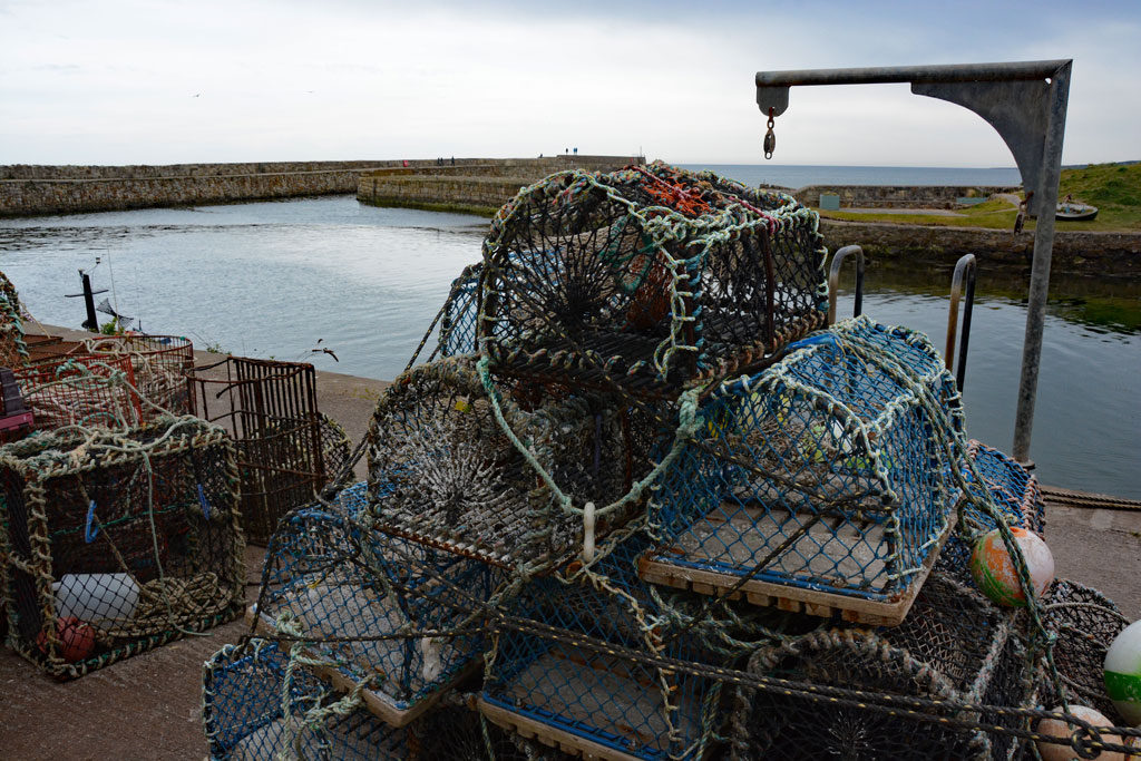 Image of lobster cages