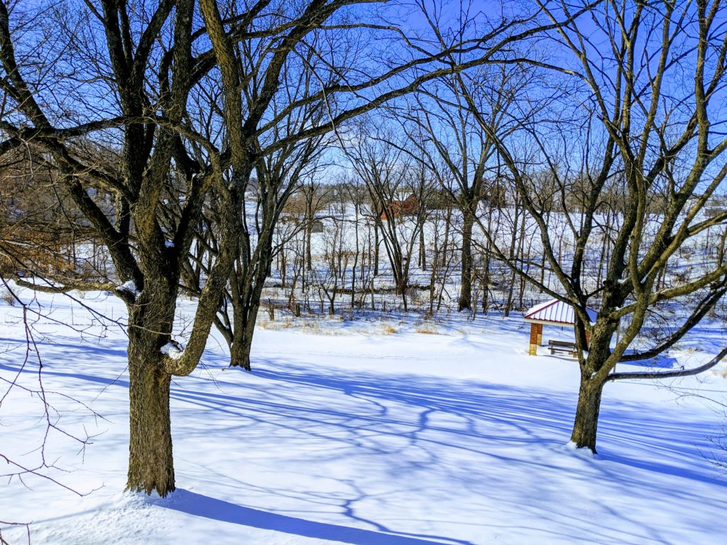 Photo of snowy scene.